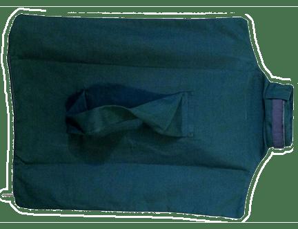 green cat carrier