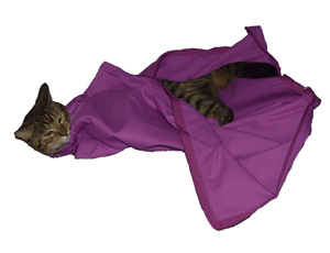 Lavender EZ-Zip Carrier Cat