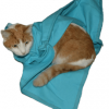 Light Blue EZ-Zip Carrier Cat