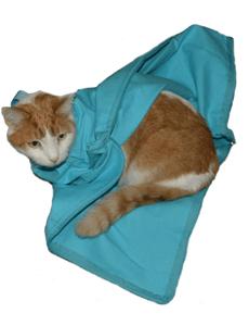 bf6ba6158d1 Light Blue Cozy Comfort (E-Z Zip) Carrier | Cat-In-The-Bag