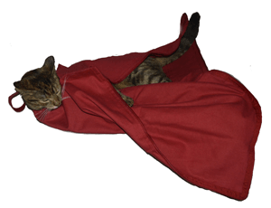 142367a1c07 Red Cozy Comfort (E-Z Zip) Carrier | Cat-In-The-Bag